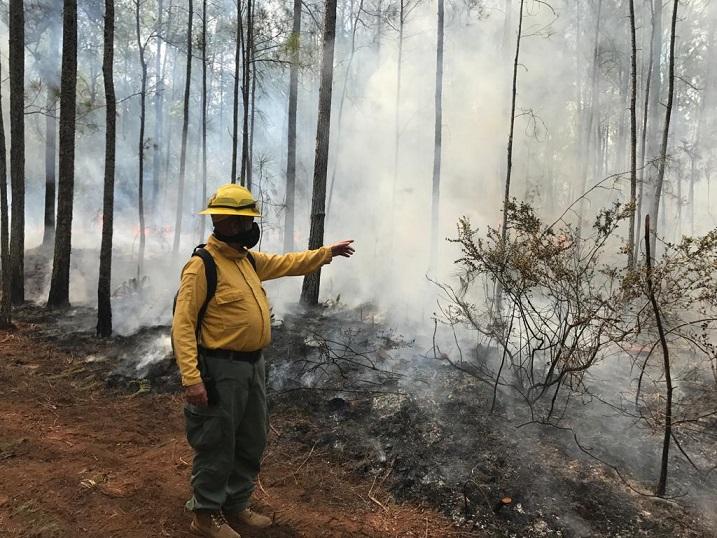 Incendio forestal en Sierra Bahoruco.