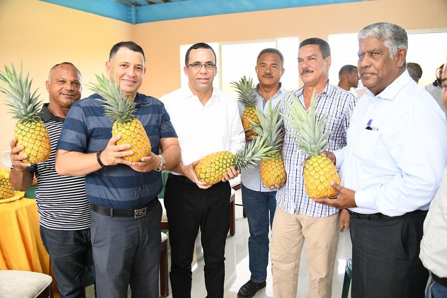 Andrés Navarro se reúne productores piña Cevicos.