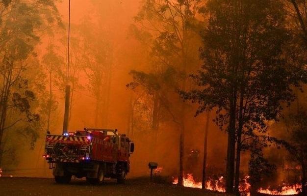 Desbastadores incendios en Australia.(Foto: externa)