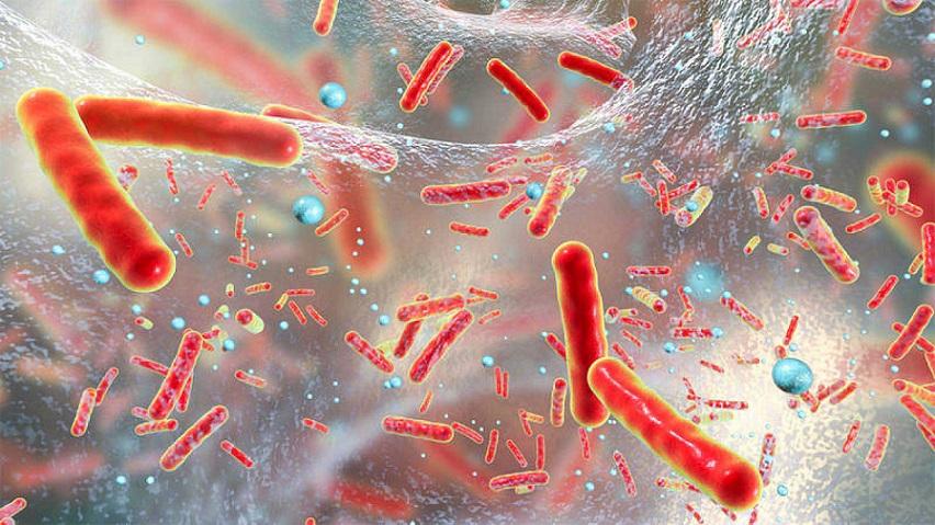 Antibióticos aumenta resistencia de bacterias.