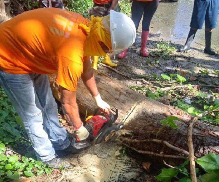 Dos ventarrones dañan viviendas, derriban árboles y postes eléctricos en Santiago.