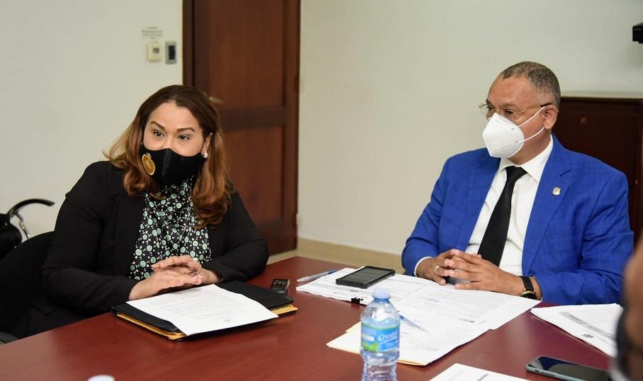 Ministra de la Mujer se reúne con Comisión de Justicia de la Cámara de Diputados.