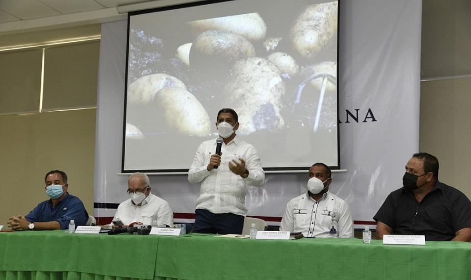 Ministerio de Agricultura acuerda pignorar producción de papa de Constanza.